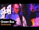 Green Bus Band — Ostinato