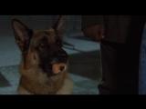 К-9 III: Частные детективы / K-9: P.I. (2002) [перевод Ю. Живов]