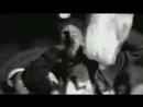 Young Cocky Feat. Yo Gotti & Ya Boy - Microwave