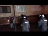 Этнические зверьки в Киеве знают, что они зверьки (протесты у МВД 29 ноября 2017) :