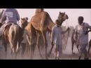В дебрях Индии Пустыня Тар Священные Пески
