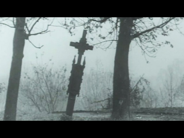 Auga kėime dagilelis (Lithuanian-Curonian orphans folk song | Našlaičių liaudies daina)