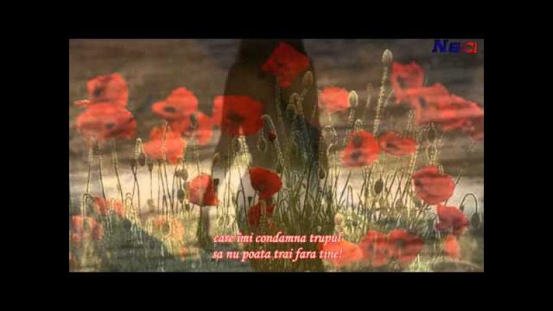 Julio Iglesias - Mal acostumbrado (romana)