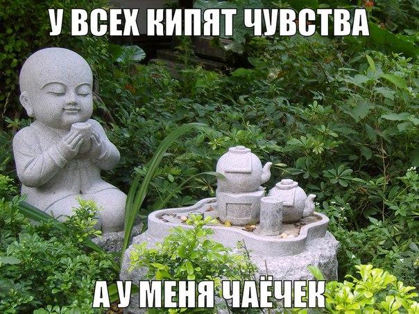 http://cs623916.vk.me/v623916641/404fe/dpjR5ArTwKI.jpg