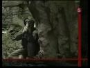 Спецназ ГРУ_ Волкодавы ( Specnaz GRU Volkodavi ) - война в чечне документальный фильм