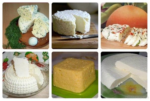 Домашний рецепт приготовления сыра фото