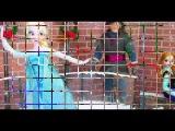 Как сделать ледяной каток кукол Монстр Хай