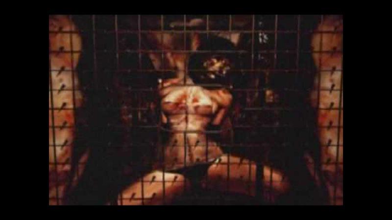 EvilSpider Studio - Silence (Directors Cut)