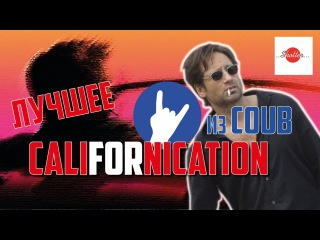 Блудливая Калифорния лучшее COUB Californication best of COUBs Приколы