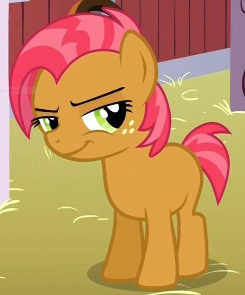 �������� ������ My Little Pony ��� Winx Land