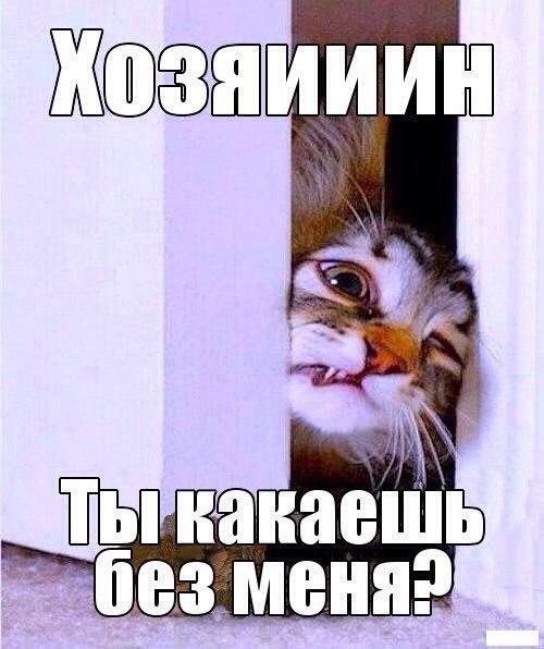 XJTMBA14R_4.jpg