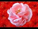 Rosas hermosas semis naturales en cintas