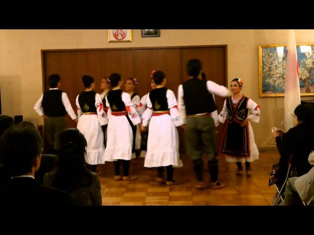 Japanci igraju srpska kola - Японцы танцует сербские народные танцы