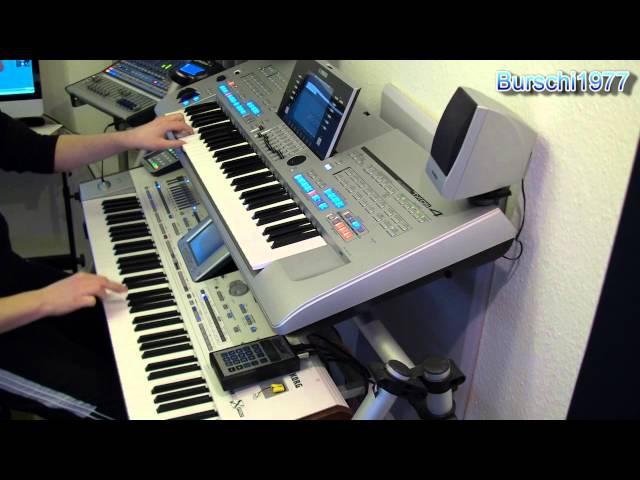 Wake me up (Avicii) - Coverversion by Burschi1977