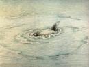 """Мультфильм """"Девочка и дельфин."""" (1979)(СССР)"""