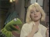 Debbie Harry &amp Kermit The Frog - Rainbow Connection