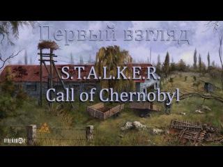 Первый взгляд S.T.A.L.K.E.R. - Call of Chernobyl