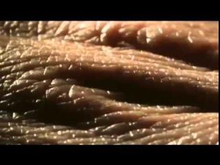 Вселенная твоего тела, микрокосмос, мир внутри человека.