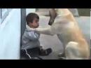 فيديو ابكى العالم الكلب والطفل المعاق ذهن