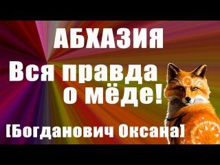 Исповедь Абхазского пчеловода. Вся правда о меде! Какой мед нельзя покупать? Пол ...