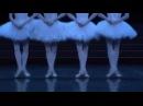 Dorothée Gilbert Myriam Ould Braham Swan Lake Little Swans