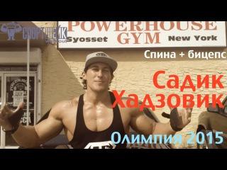 Садик Хадзовик. Спина бицепс за 40 дней до Олимпии 2015