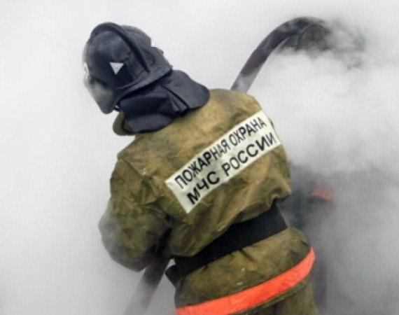 Донские спасатели спасли на пожарах двух человек