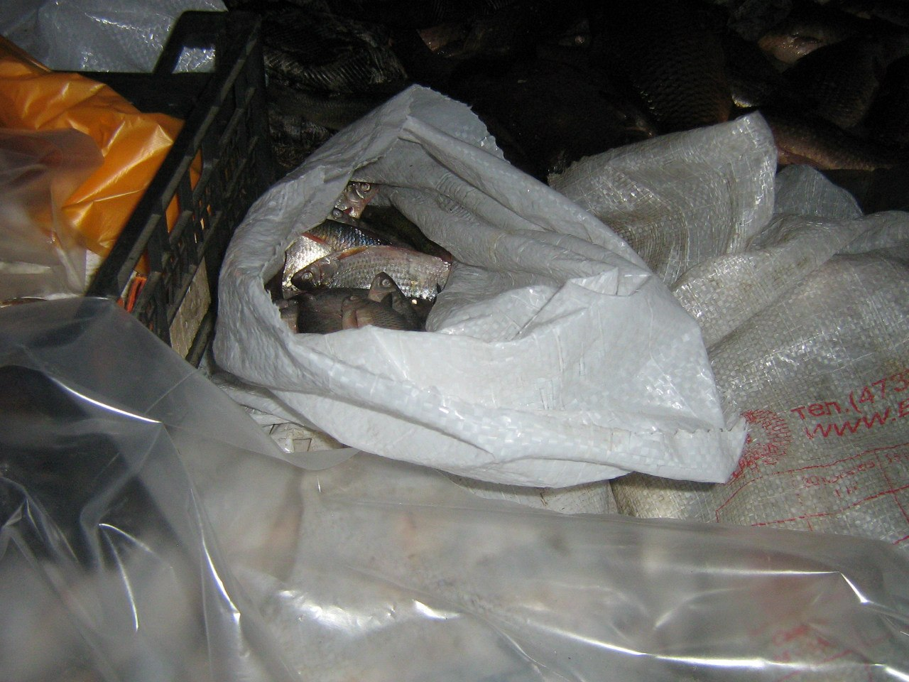 В Ростовской области ветинспекторы задержали более 5 тонн рыбы