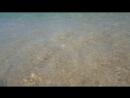 чудесный пляж в Сен Тропе