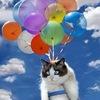 Воздушные шары, оформление свадеб, праздников