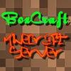 BoxCraft.ru - Все лучшие для Вас!