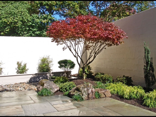 Japanese Garden Before After Vol 2 Lee's Oriental Landscape Art