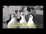 German Penguins Of Madagascar