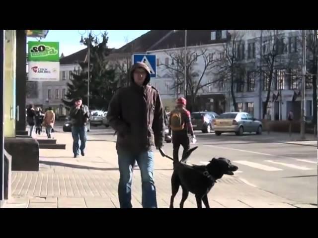 Филипп Киркоров Я себе придумал эту жизнь док.фильм