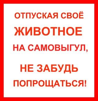 https://pp.vk.me/c623921/v623921915/362c7/x9-8N0aCO4A.jpg