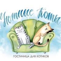 Гостиница для кошек Екатеринбург Уютные коты