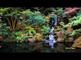 3 HOURS of The Best Relaxing music Bamboo Flute For Meditation, Spa, Healing and Sleep