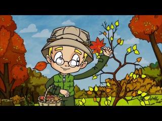 Почему листья желтеют - Профессор Почемушкин