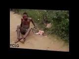 Дикий народ Африки