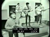 Wayne Fontana &amp The Mindbenders - Just A Little Bit Too Late (Live)