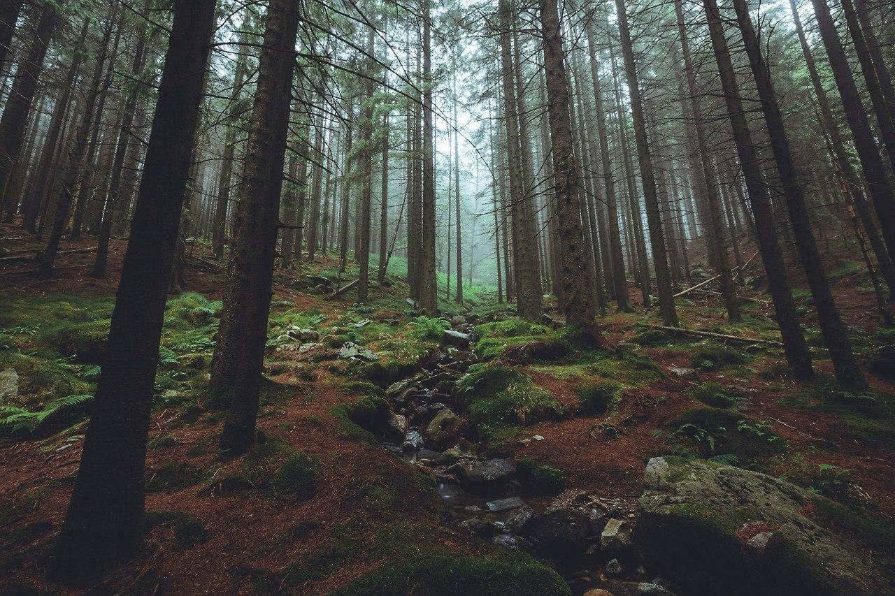Роскошные пейзажи Норвегии - Страница 22 EF-3siw8Xi4