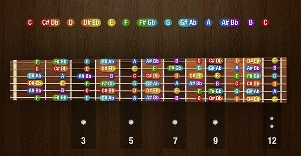 Ноты на грифе гитары.
