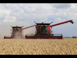 Case IH Axial-Flow 8230 & 7130 working together | Wheat harvest 2014 | Holland