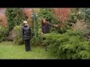 Восточные традиции в саду. Ландшафтные хитрости. Выпуск 95