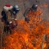 Добровольные степные пожарные (Астрахань)