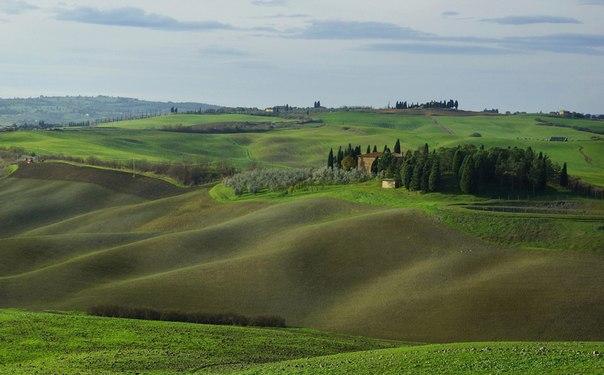 «Бархатные холмы Тосканы». Автор фото: Петр Косых