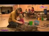 Канистерапия - игра с собакой по медицинской технологии
