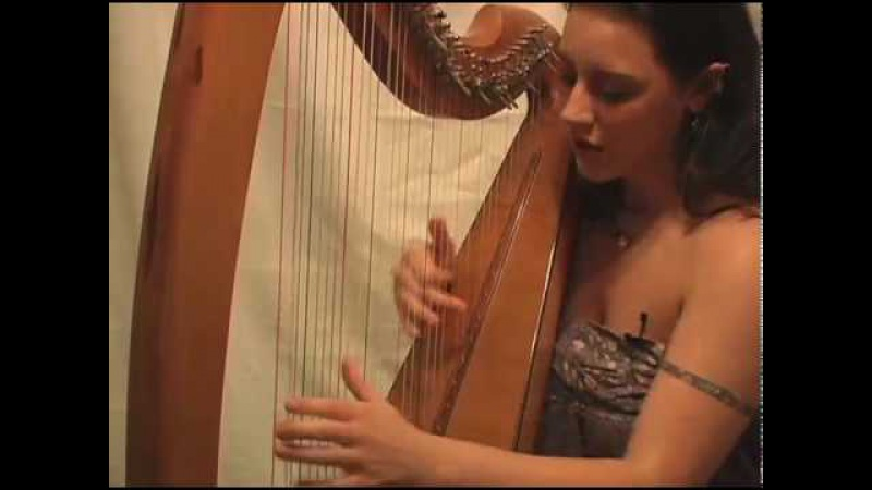Marta Cook Celtic Harpist Plays with Rhythm