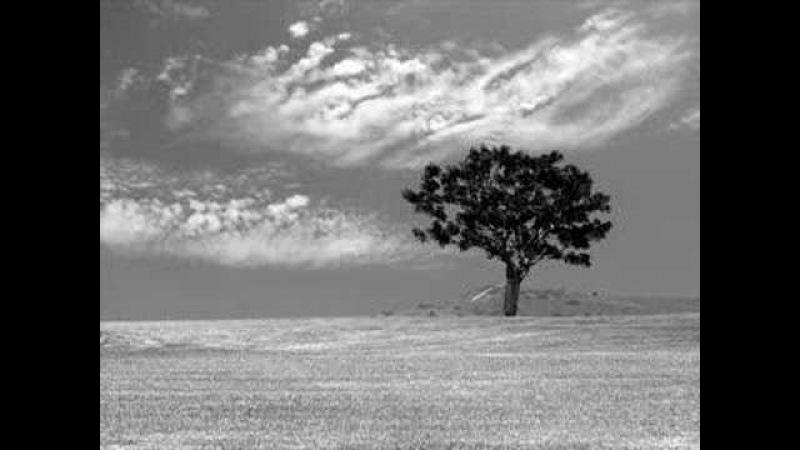 Гусейн Манапов - Небо Над Землей
