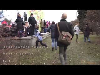 Митинг врачей на Суворовской площади 2 ноября 2014 года